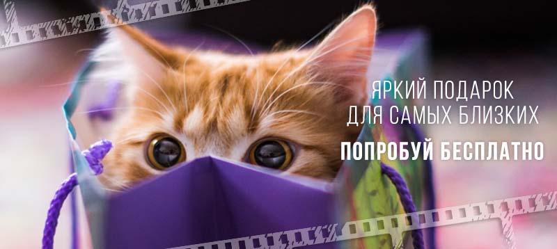 (c) Fromfoto.com